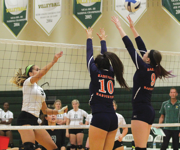 Volleyball looks to finish strong in conference