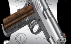 New gun laws go into effect