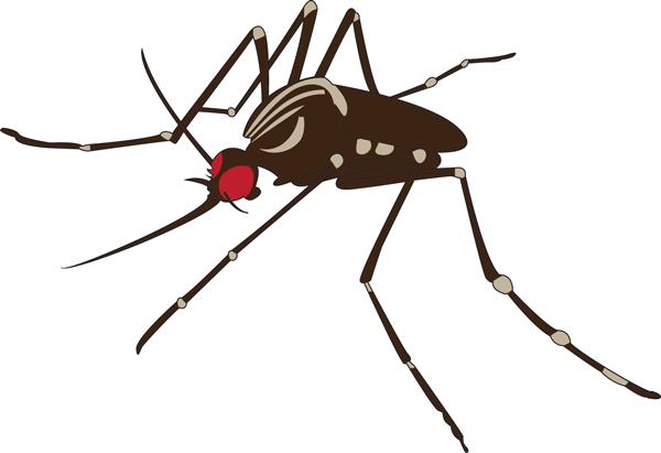 Funding hinders Zika fight