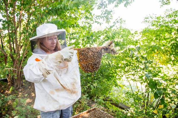 Backyard Beekeeper: Lab coordinator's fascination with bees drives her hobby