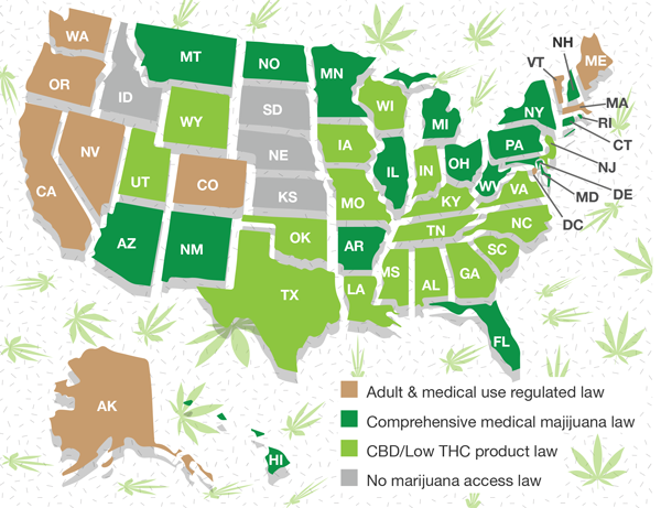 High time for change? Attitudes on marijuana shifting at state levels