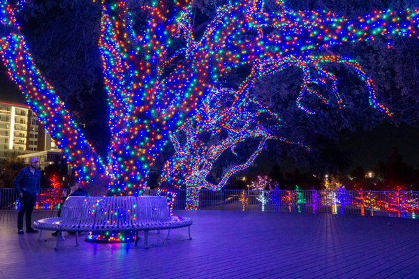 Make Christmas eventful and cheap with these events