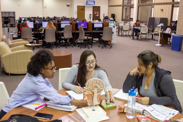 From left, nursing majors Imani Finley and Cristina Nuño, and Stefany Carrera, a biology major, study anatomy in the library on April 15. Yesenia Alvarado/The Et Cetera